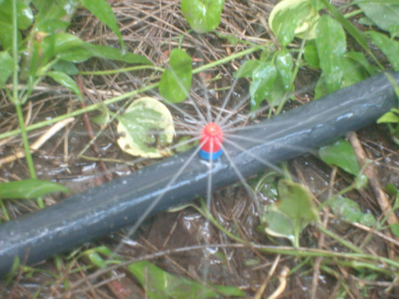 Don torcuato riego por aspersi n sistemas de riegos for Proyecto de riego por aspersion